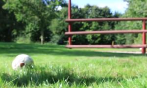 Fodbold i græsset ved hul nr. 3 på fodboldgolfbanen
